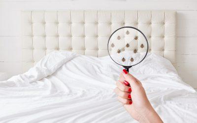 ¿Sabes cómo desinfectar un colchón?